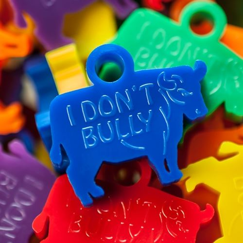 Anti-bully Awards - Bull Award LTD
