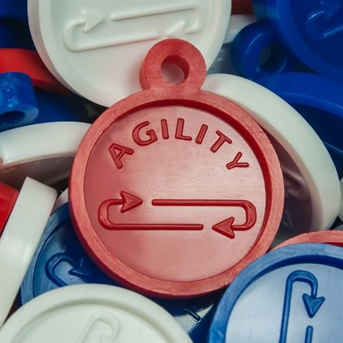 Kids Fitness Awards - Agility Fitness Medals