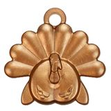 Monthly-Themed Educational Award - Tom Turkey